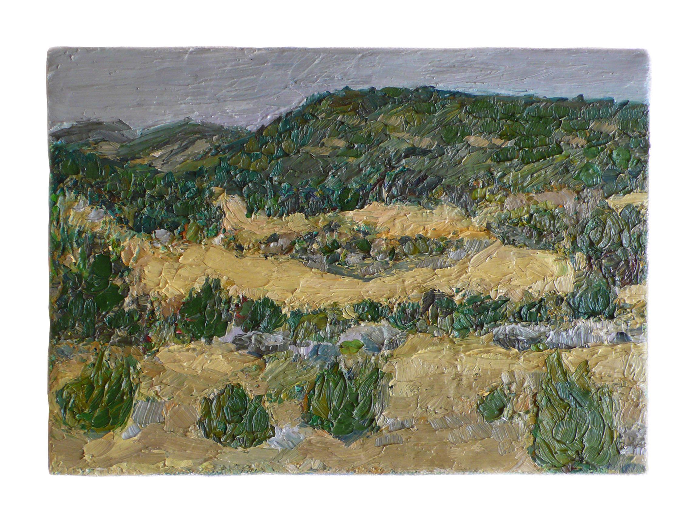 2005 fields 19x27cm